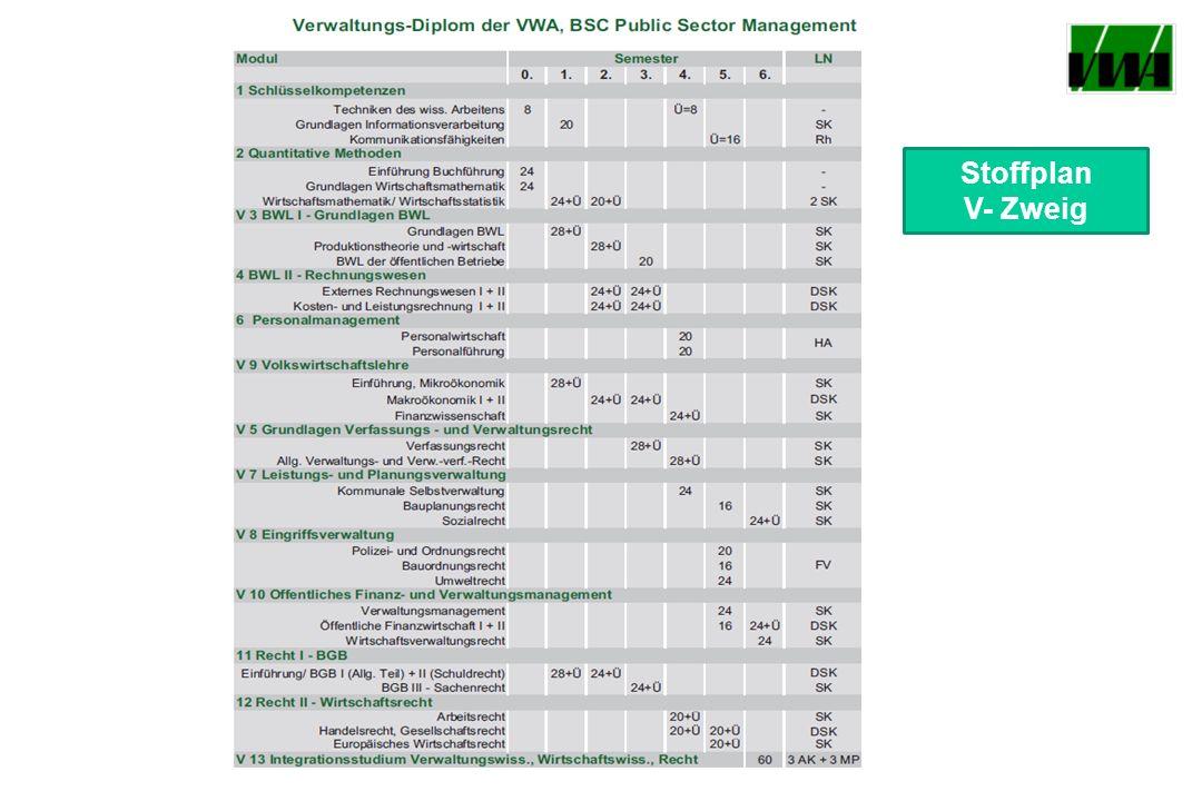 Stoffplan V- Zweig