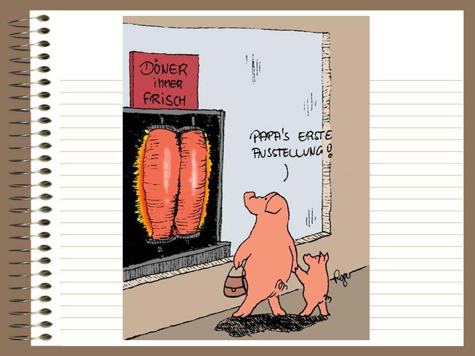 Übungen Was sagen die Schweine