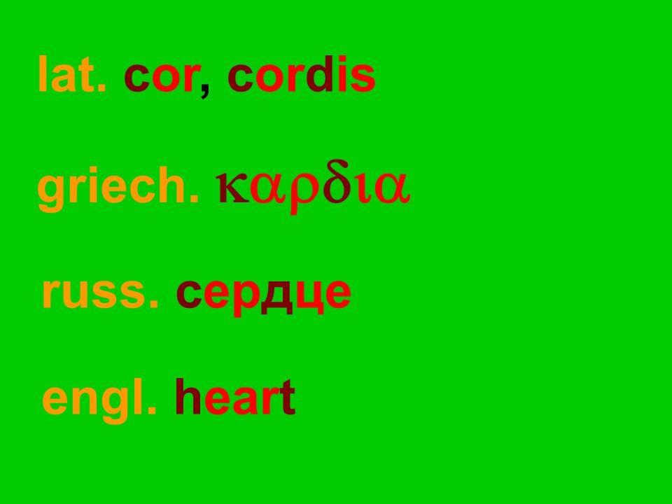 russ. сердце engl. heart lat. cor, cordis griech. 