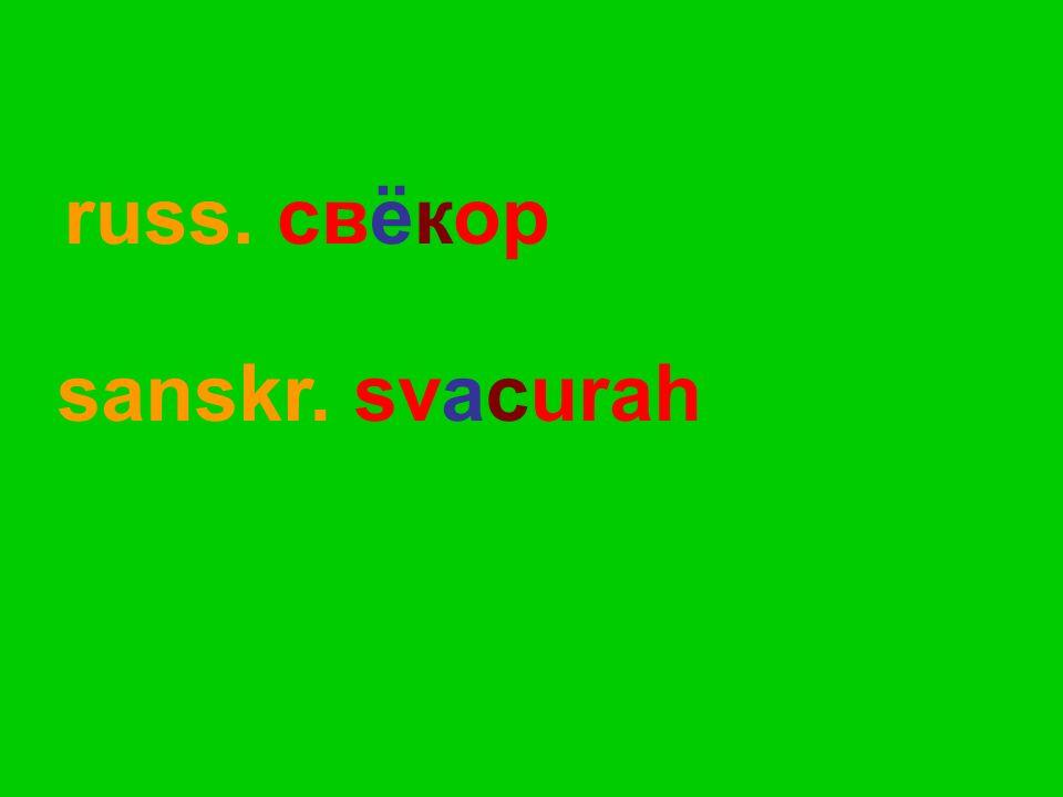 russ. свёкор sanskr. svacurah