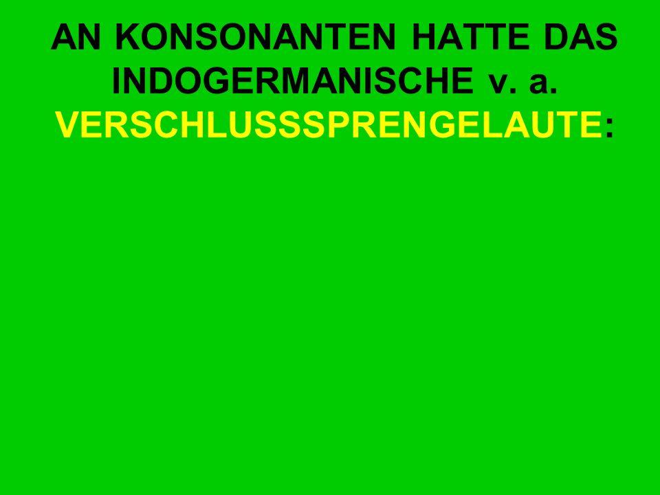 AN KONSONANTEN HATTE DAS INDOGERMANISCHE v. a. VERSCHLUSSSPRENGELAUTE: