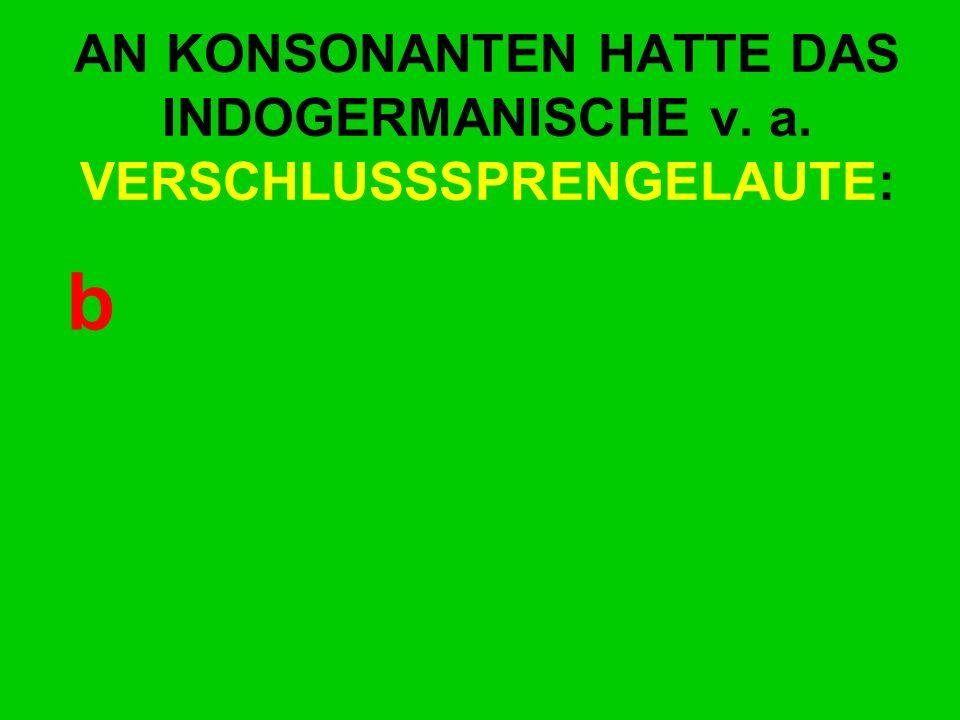 AN KONSONANTEN HATTE DAS INDOGERMANISCHE v. a. VERSCHLUSSSPRENGELAUTE: b