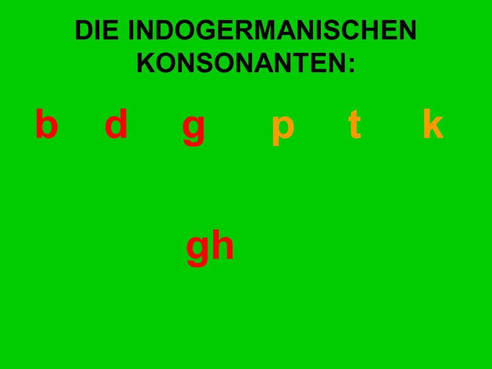 DIE INDOGERMANISCHEN KONSONANTEN: bd gp t k gh