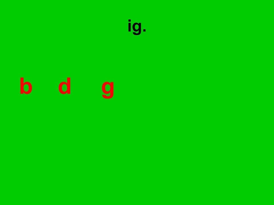 bd g ig.