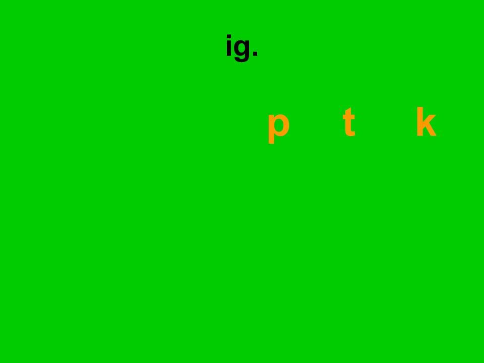 p t k ig.