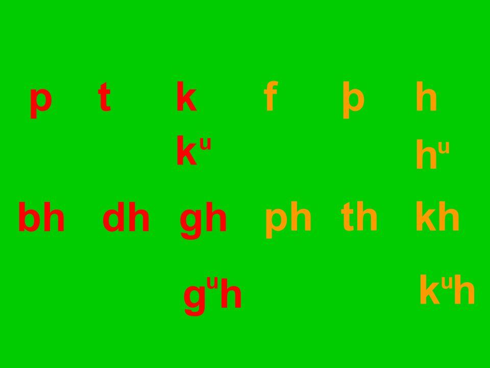 pt kf þ h bhdhgh ph th kh g h k h k h u uu u
