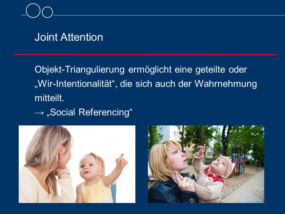 """Joint Attention Objekt-Triangulierung ermöglicht eine geteilte oder """"Wir-Intentionalität"""", die sich auch der Wahrnehmung mitteilt. → """"Social Referenci"""