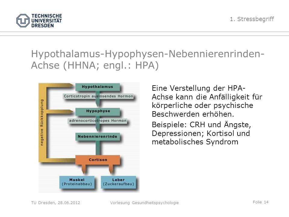 Folie 14 TU Dresden, 28.06.2012Vorlesung Gesundheitspsychologie Hypothalamus-Hypophysen-Nebennierenrinden- Achse (HHNA; engl.: HPA) Eine Verstellung der HPA- Achse kann die Anfälligkeit für körperliche oder psychische Beschwerden erhöhen.