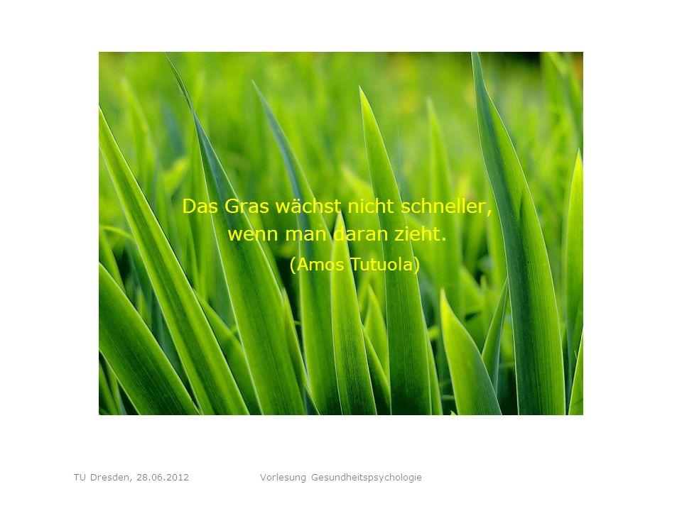 """Folie 44 TU Dresden, 28.06.2012Vorlesung Gesundheitspsychologie Schritt 2: """"Ideen zur Bewältigung sammeln : Dann sammle ich möglichst viele unterschiedliche Ideen, wie die Situation zu bewältigen wäre, ohne vorschnell bestimmte Vorschläge zu verwerfen."""