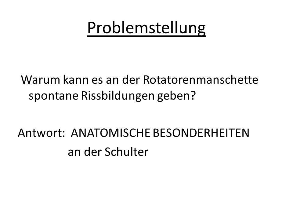 Problemstellung Warum kann es an der Rotatorenmanschette spontane Rissbildungen geben.
