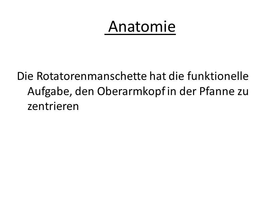 Anatomie Die Rotatorenmanschette hat die funktionelle Aufgabe, den Oberarmkopf in der Pfanne zu zentrieren
