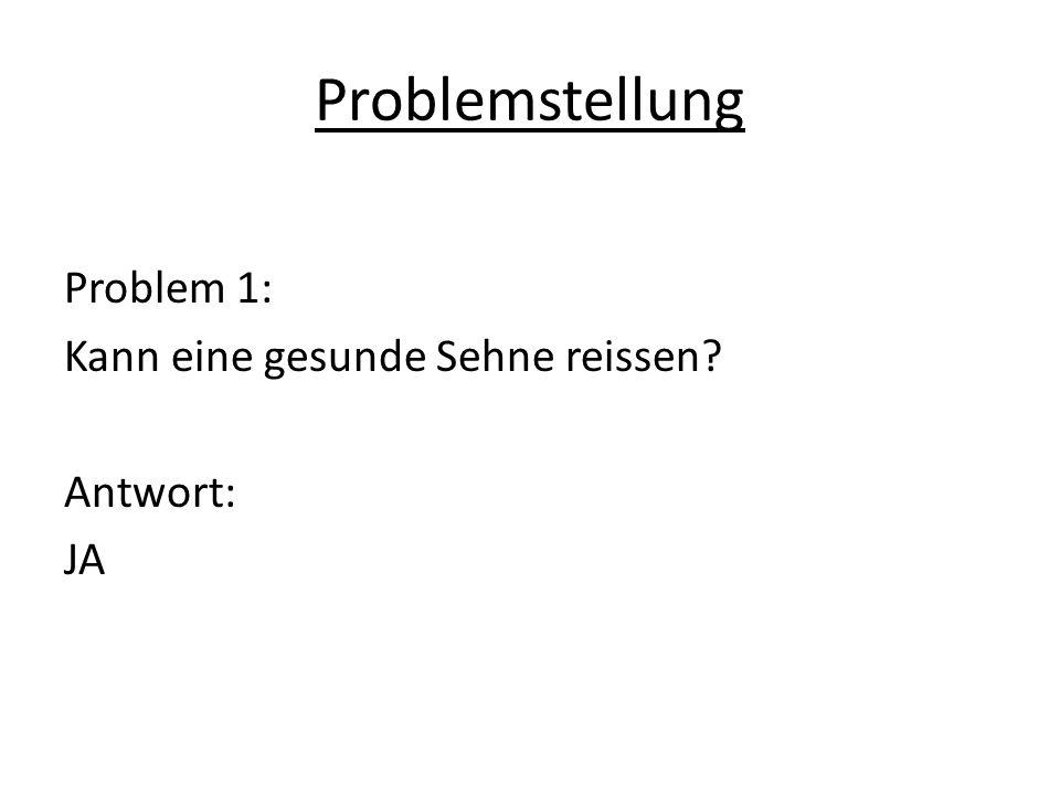 Problemstellung Problem 1: Kann eine gesunde Sehne reissen Antwort: JA