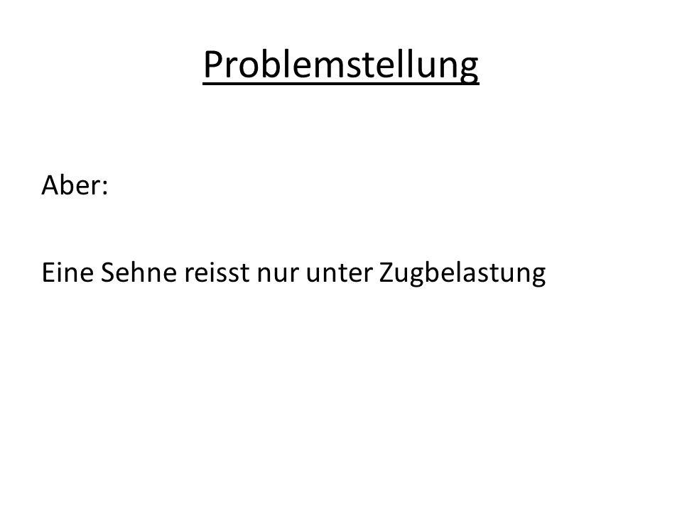 Algorithmus der Bemessung 1.Schritt: Bewertung des Unfallereignisses -Nicht geeignet  Ende des Verfahrens -Frgl.