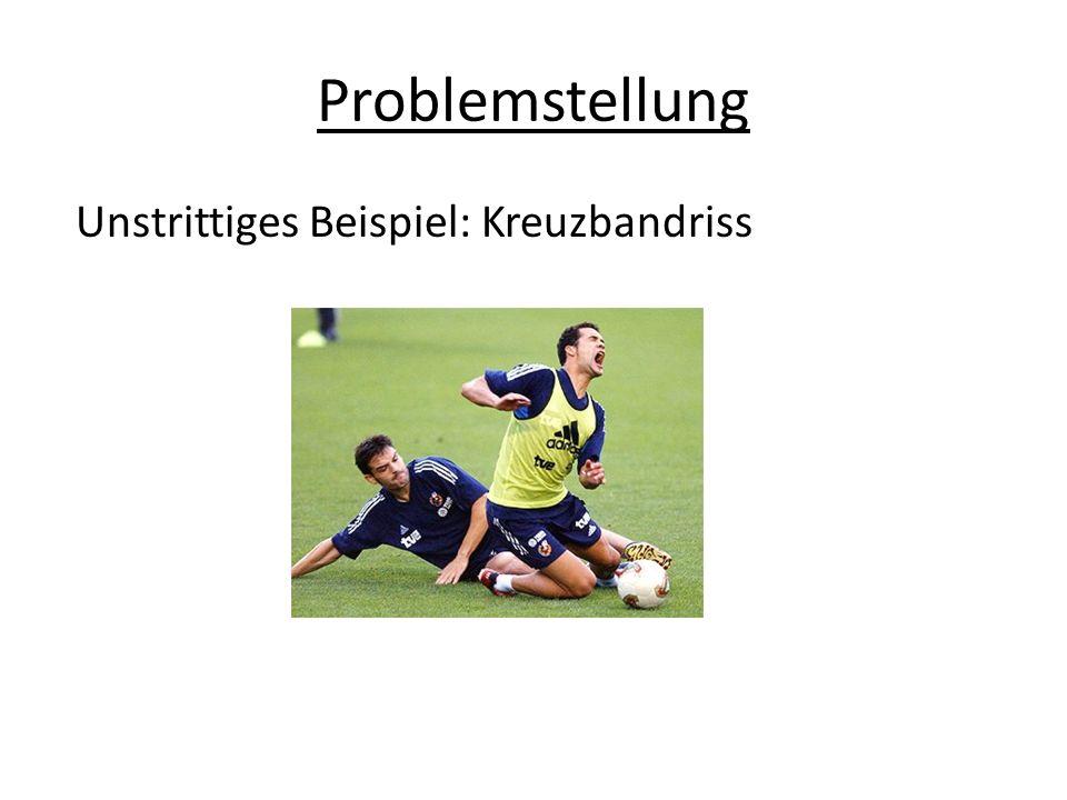 Algorithmus der Bemessung 2.