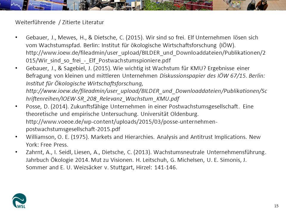 Weiterführende / Zitierte Literatur Gebauer, J., Mewes, H., & Dietsche, C.