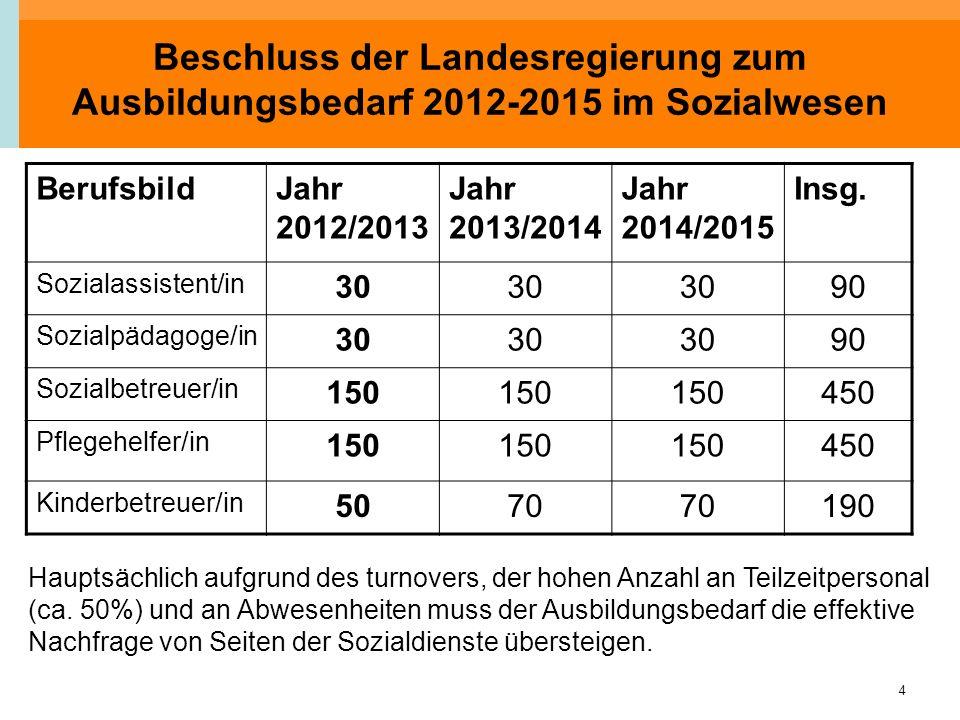 4 Beschluss der Landesregierung zum Ausbildungsbedarf 2012-2015 im Sozialwesen BerufsbildJahr 2012/2013 Jahr 2013/2014 Jahr 2014/2015 Insg. Sozialassi