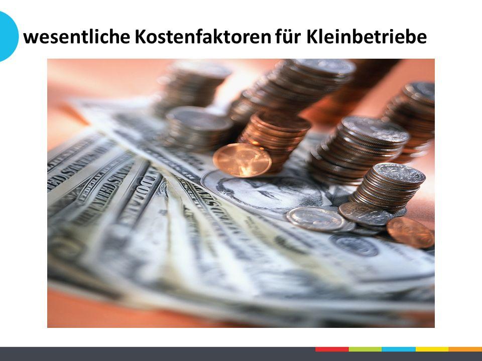 wesentliche Kostenfaktoren für Kleinbetriebe