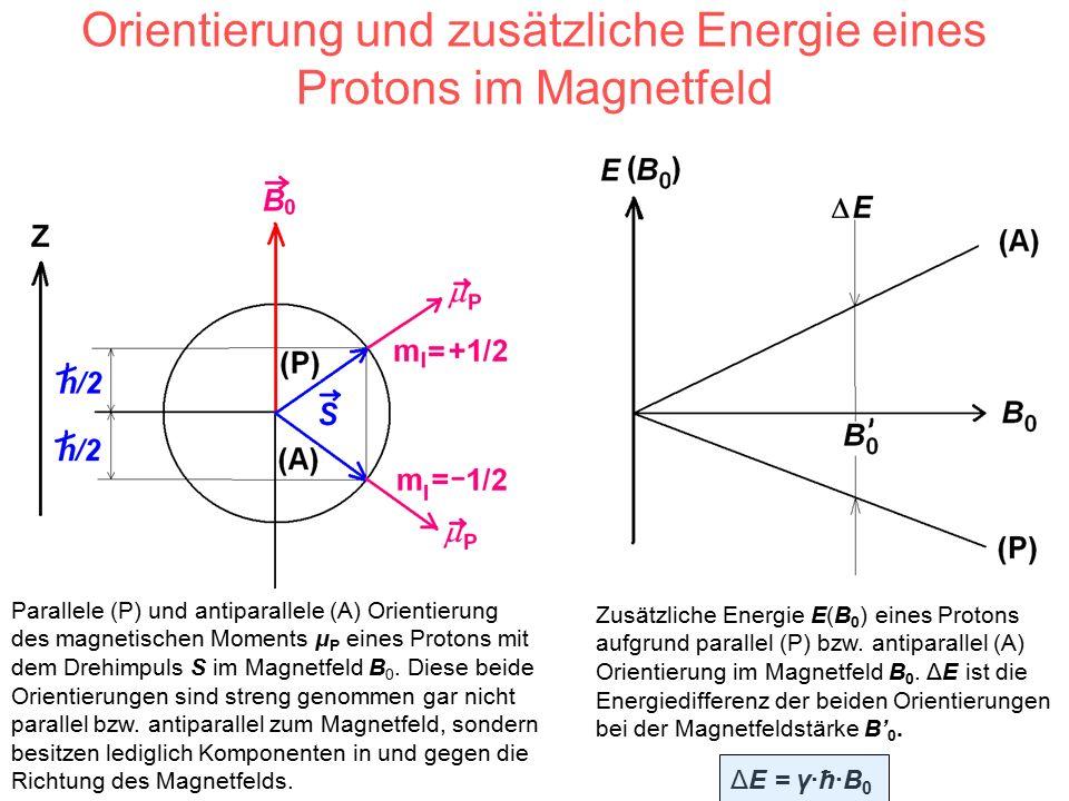 Orientierung und zusätzliche Energie eines Protons im Magnetfeld Parallele (P) und antiparallele (A) Orientierung des magnetischen Moments μ P eines Protons mit dem Drehimpuls S im Magnetfeld B 0.
