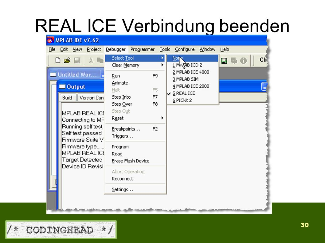 30 REAL ICE Verbindung beenden