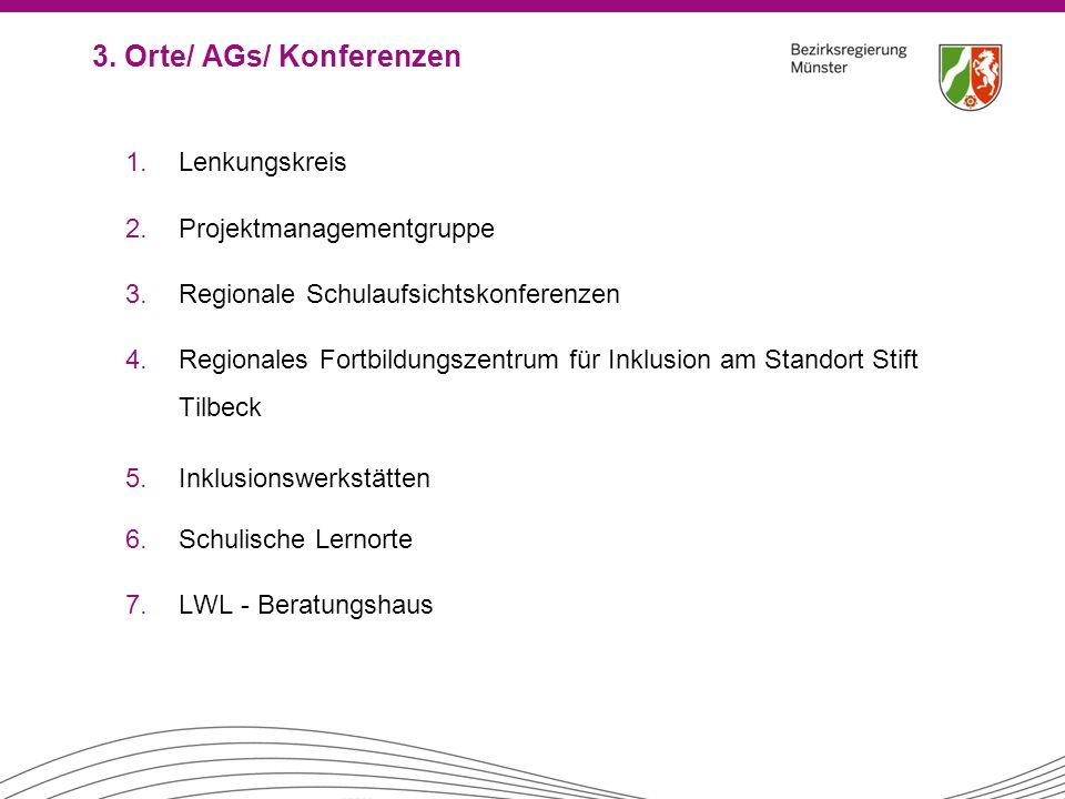 3. Orte/ AGs/ Konferenzen 1.Lenkungskreis 2.Projektmanagementgruppe 3.Regionale Schulaufsichtskonferenzen 4.Regionales Fortbildungszentrum für Inklusi