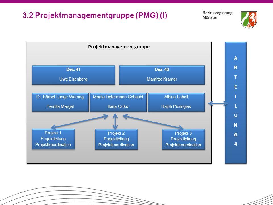 3.2 Projektmanagementgruppe (PMG) (I) Projektmanagementgruppe Projekt 3 Projektleitung Projektkoordination Projekt 3 Projektleitung Projektkoordinatio