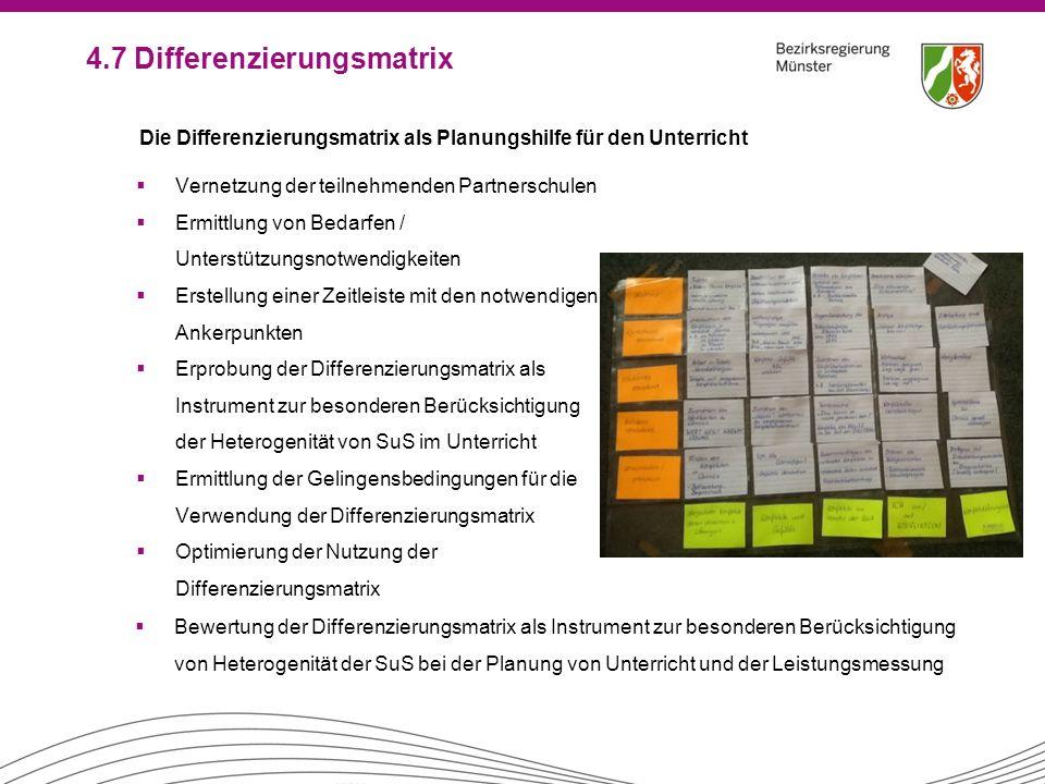 4.7 Differenzierungsmatrix  Vernetzung der teilnehmenden Partnerschulen  Ermittlung von Bedarfen / Unterstützungsnotwendigkeiten  Erstellung einer
