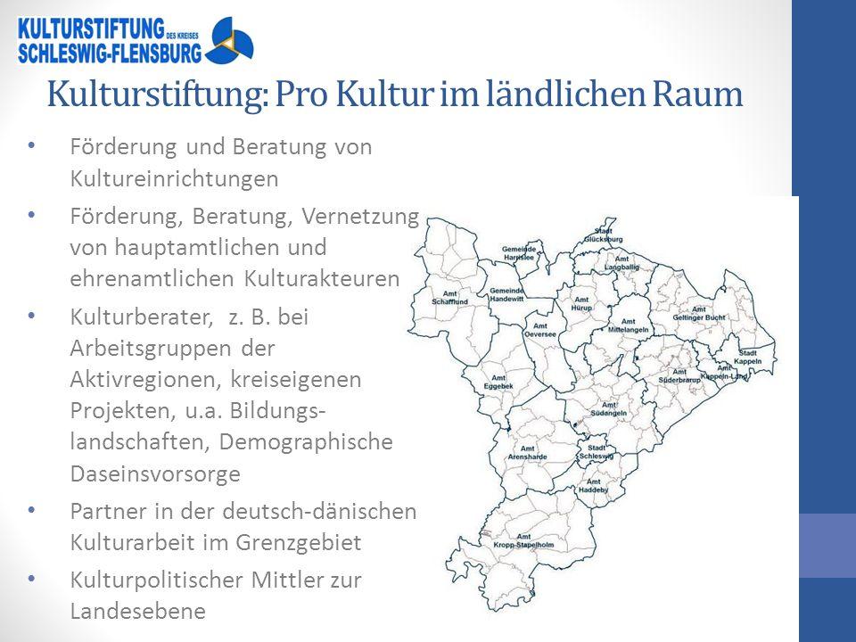 Kreismusikschule Hauptstelle in Schleswig, vier hauptamtliche Bezirksstellen in Kropp, Kappeln, Schafflund, Mittelangeln Einzel-, Gruppen-, Ensembleunterricht ca.
