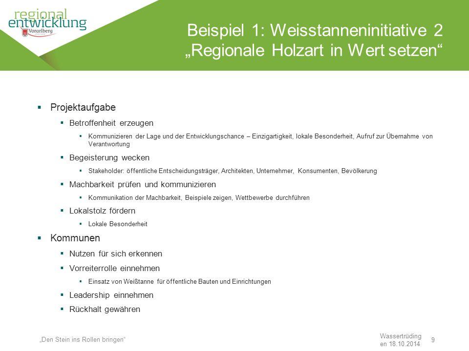 """9 Beispiel 1: Weisstanneninitiative 2 """"Regionale Holzart in Wert setzen"""" Wassertrüding en 18.10.2014 """"Den Stein ins Rollen bringen""""  Projektaufgabe """