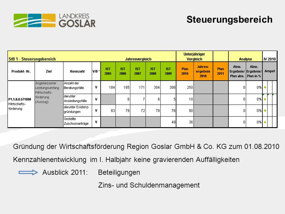 Steuerungsbereich Gründung der Wirtschaftsförderung Region Goslar GmbH & Co.