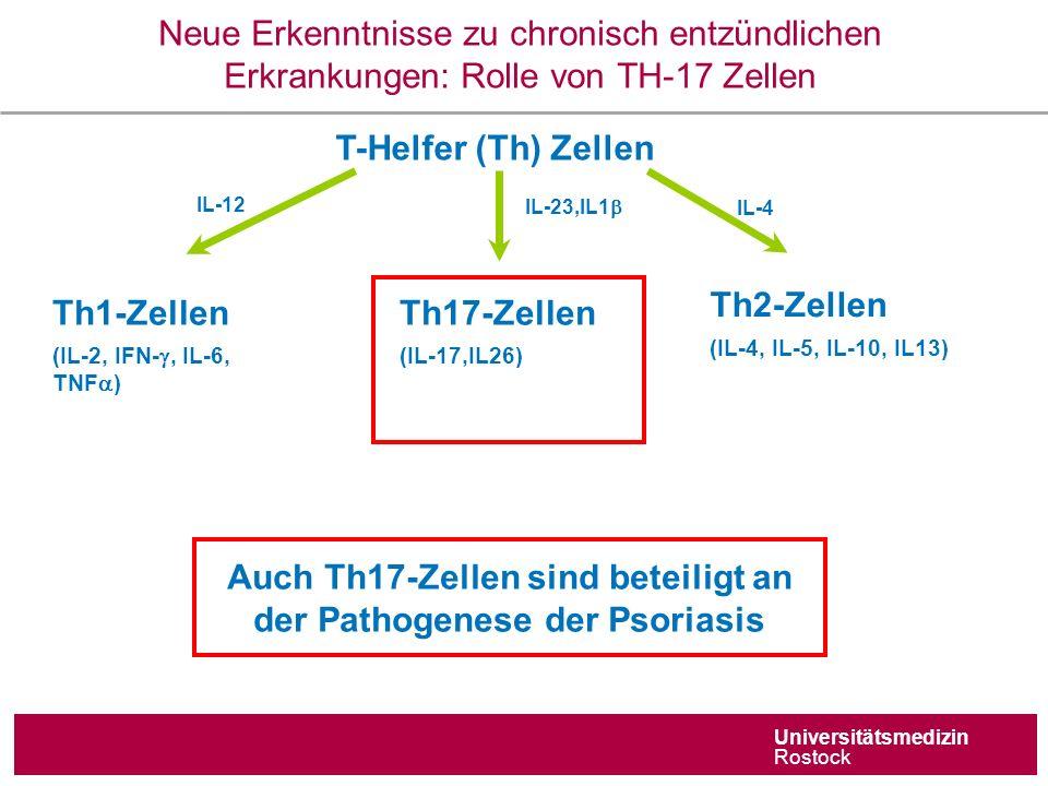 Universitätsmedizin Rostock Neue Erkenntnisse zu chronisch entzündlichen Erkrankungen: Rolle von TH-17 Zellen T-Helfer (Th) Zellen IL-23,IL1  IL-4 IL-12 Th17-Zellen (IL-17,IL26) Th1-Zellen (IL-2, IFN- , IL-6, TNF  ) Th2-Zellen (IL-4, IL-5, IL-10, IL13) Auch Th17-Zellen sind beteiligt an der Pathogenese der Psoriasis