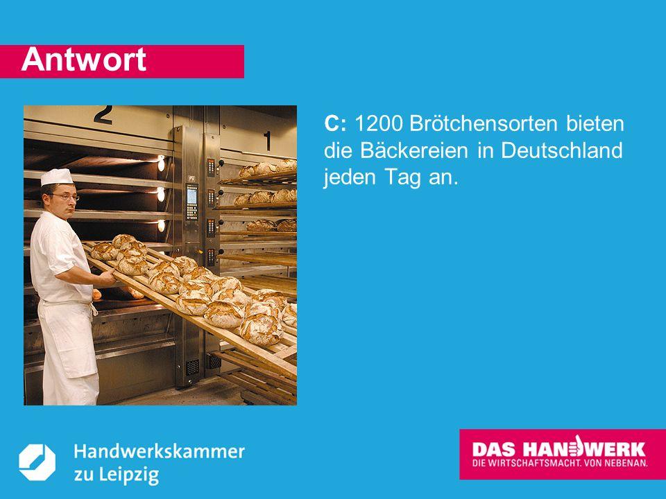 © Handwerkskammer zu Leipzig, Dresdner Straße 11/13, 04103 Leipzig Handwerker sind überall im Einsatz – fast überall.