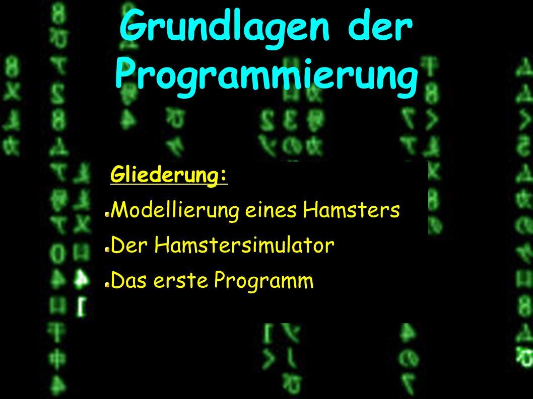 Grundlagen der Programmierung Gliederung: Modellierung eines Hamsters Der Hamstersimulator Das erste Programm
