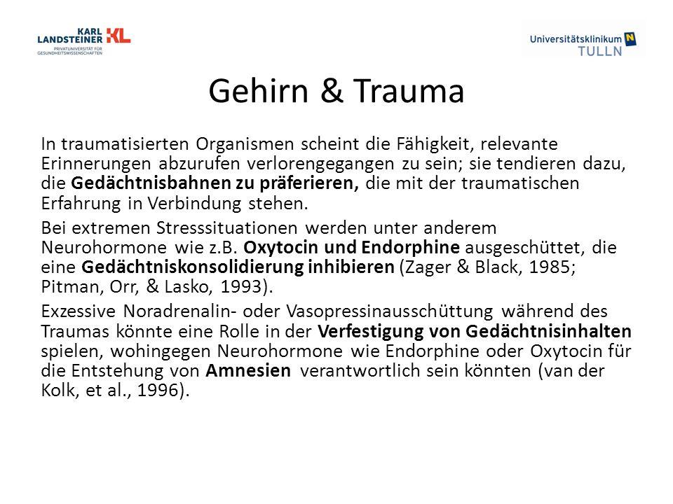 Gehirn & Trauma In traumatisierten Organismen scheint die Fähigkeit, relevante Erinnerungen abzurufen verlorengegangen zu sein; sie tendieren dazu, di