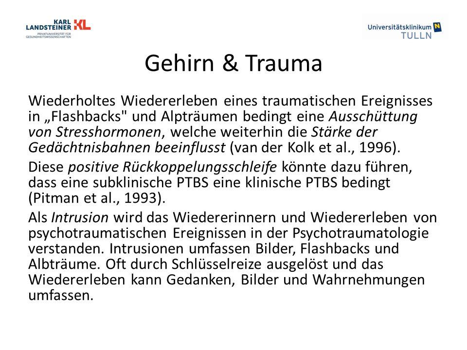 """Gehirn & Trauma Wiederholtes Wiedererleben eines traumatischen Ereignisses in """"Flashbacks und Alpträumen bedingt eine Ausschüttung von Stresshormonen, welche weiterhin die Stärke der Gedächtnisbahnen beeinflusst (van der Kolk et al., 1996)."""