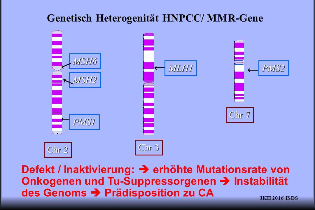 Genetisch Heterogenität HNPCC/ MMR-Gene Defekt / Inaktivierung:  erhöhte Mutationsrate von Onkogenen und Tu-Suppressorgenen  Instabilität des Genoms
