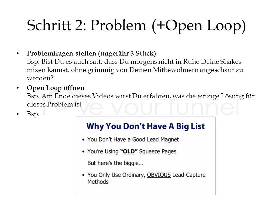 Schritt 2: Problem (+Open Loop) Problemfragen stellen (ungefähr 3 Stück) Bsp.