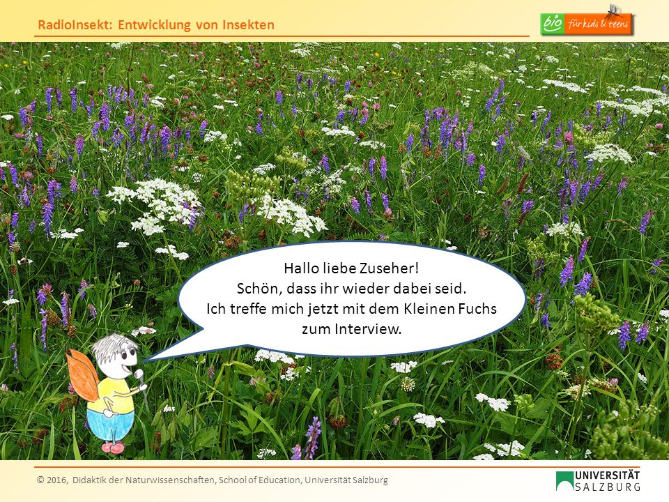 RadioInsekt: Entwicklung von Insekten © 2016, Didaktik der Naturwissenschaften, School of Education, Universität Salzburg Hallo liebe Zuseher! Schön,