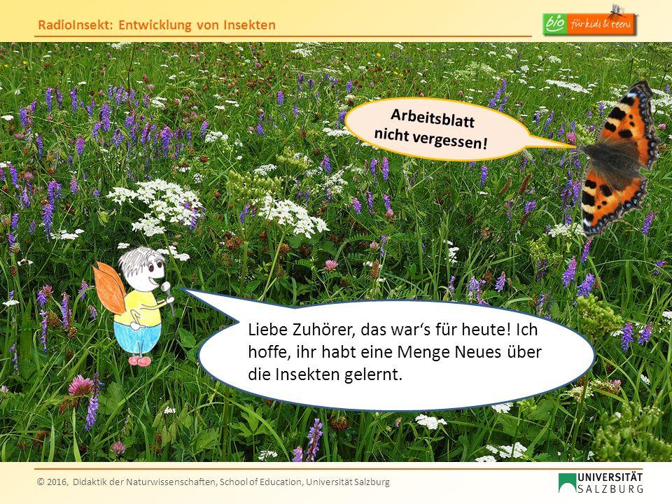 RadioInsekt: Entwicklung von Insekten © 2016, Didaktik der Naturwissenschaften, School of Education, Universität Salzburg Liebe Zuhörer, das war's für