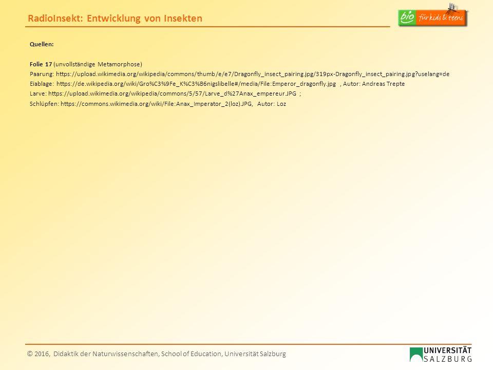 RadioInsekt: Entwicklung von Insekten © 2016, Didaktik der Naturwissenschaften, School of Education, Universität Salzburg Quellen: Folie 17 (unvollstä