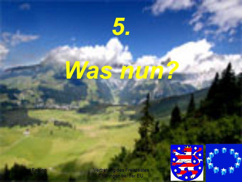 Arnd FabianVertretung des Freistaates Thüringen bei der EU 34 5. Was nun