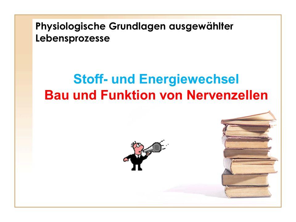 Physiologische Grundlagen ausgewählter Lebensprozesse Stoff- und Energiewechsel Bau und Funktion von Nervenzellen