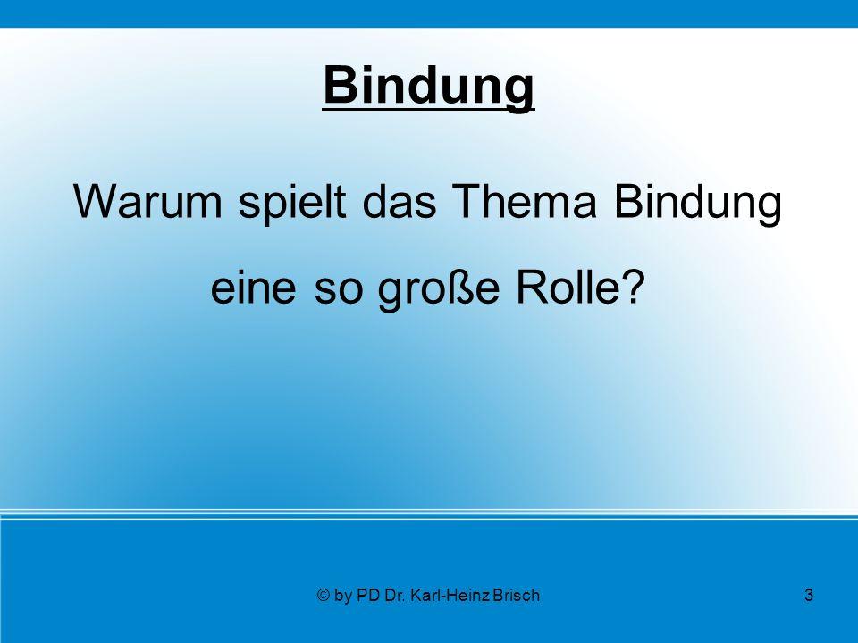 © by PD Dr. Karl-Heinz Brisch3 Bindung Warum spielt das Thema Bindung eine so große Rolle