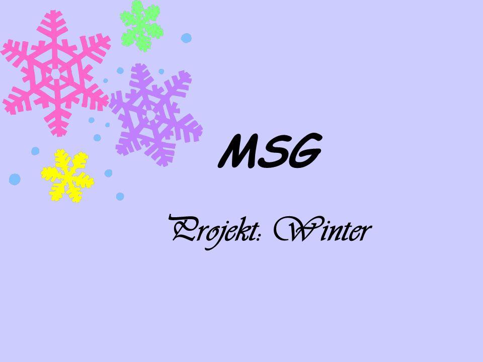 MSG Projekt: Winter