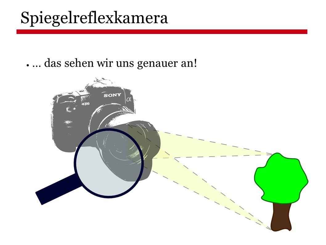 ● … das sehen wir uns genauer an! Spiegelreflexkamera