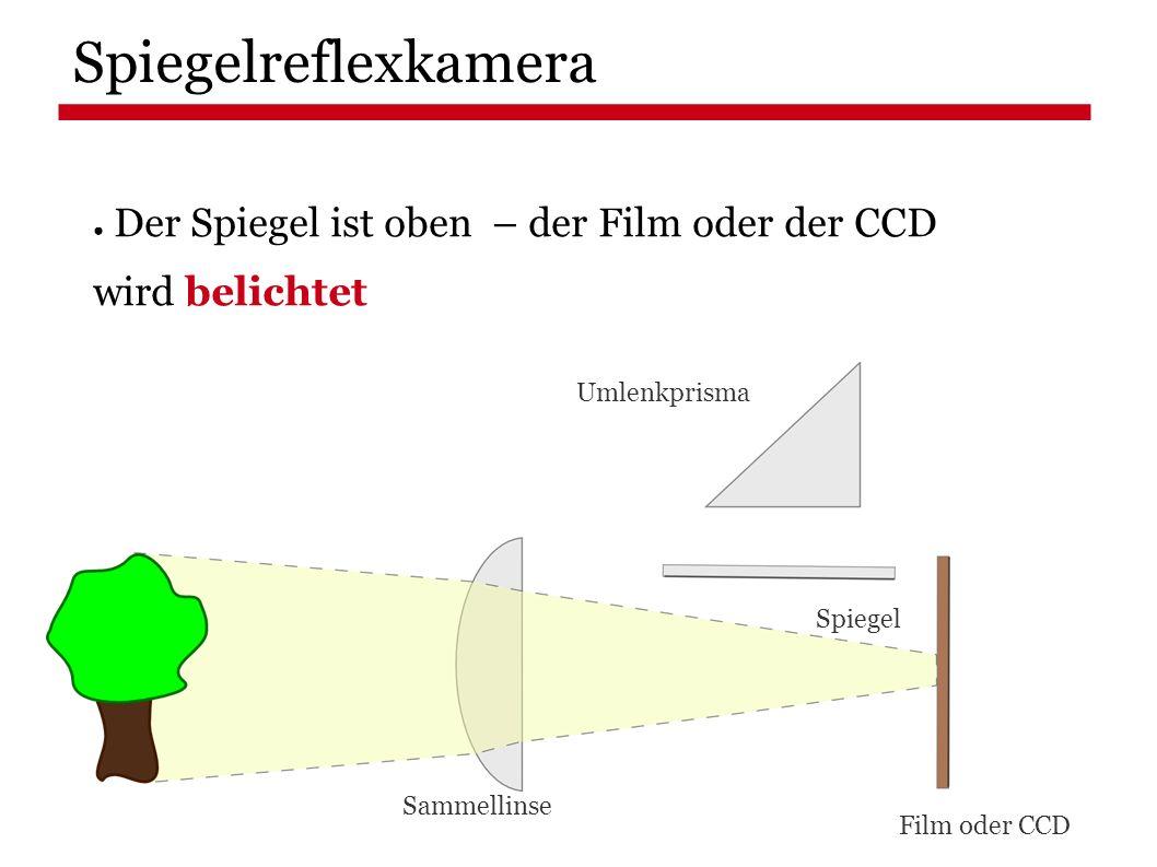 ● Der Spiegel ist oben – der Film oder der CCD wird belichtet Spiegelreflexkamera Film oder CCD Spiegel Umlenkprisma Sammellinse