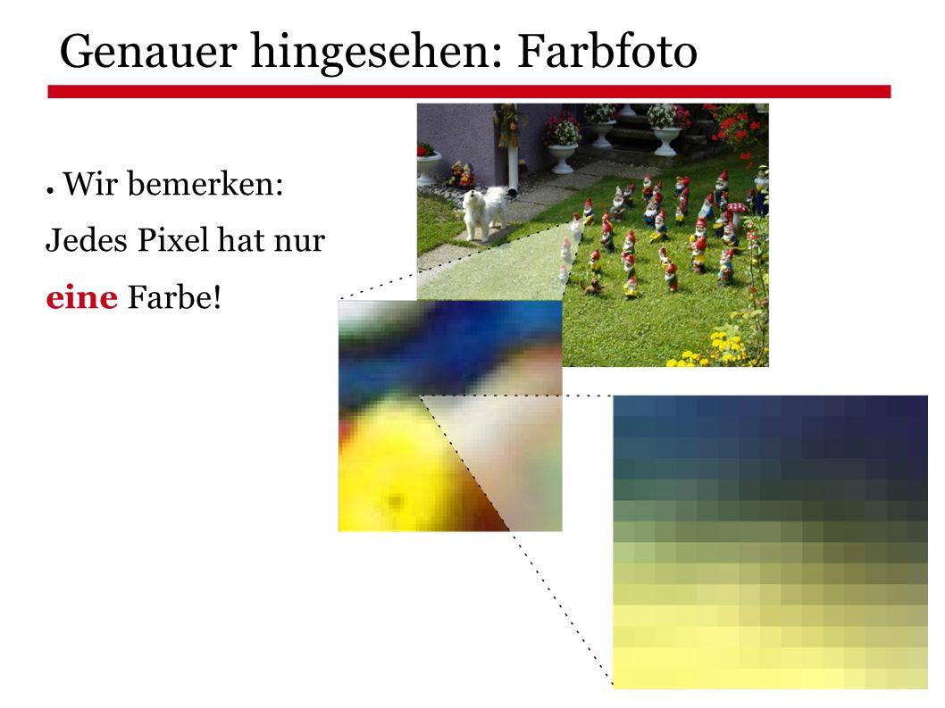 Genauer hingesehen: Farbfoto ● Wir bemerken: Jedes Pixel hat nur eine Farbe!