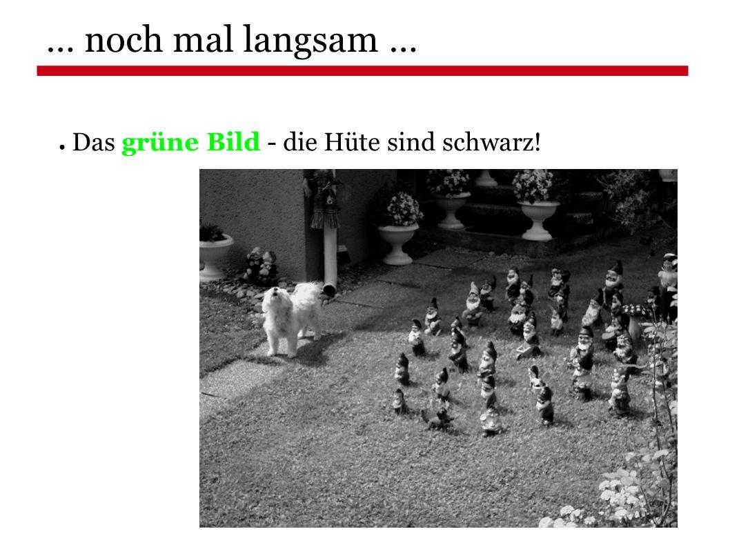 ● Das grüne Bild - die Hüte sind schwarz! … noch mal langsam …