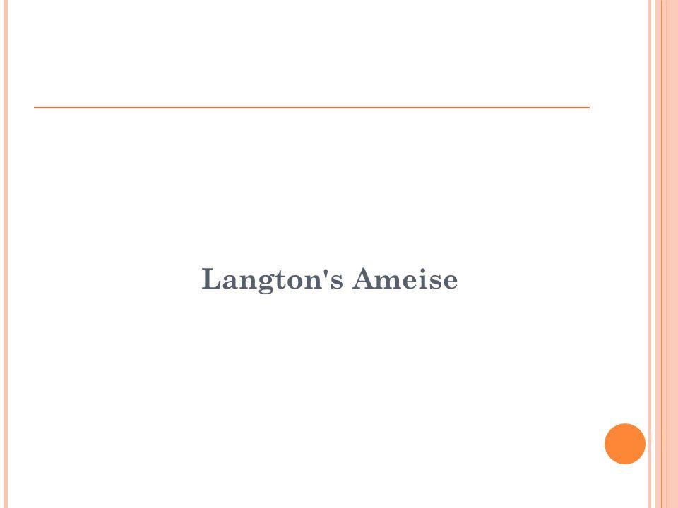 Langton s Ameise