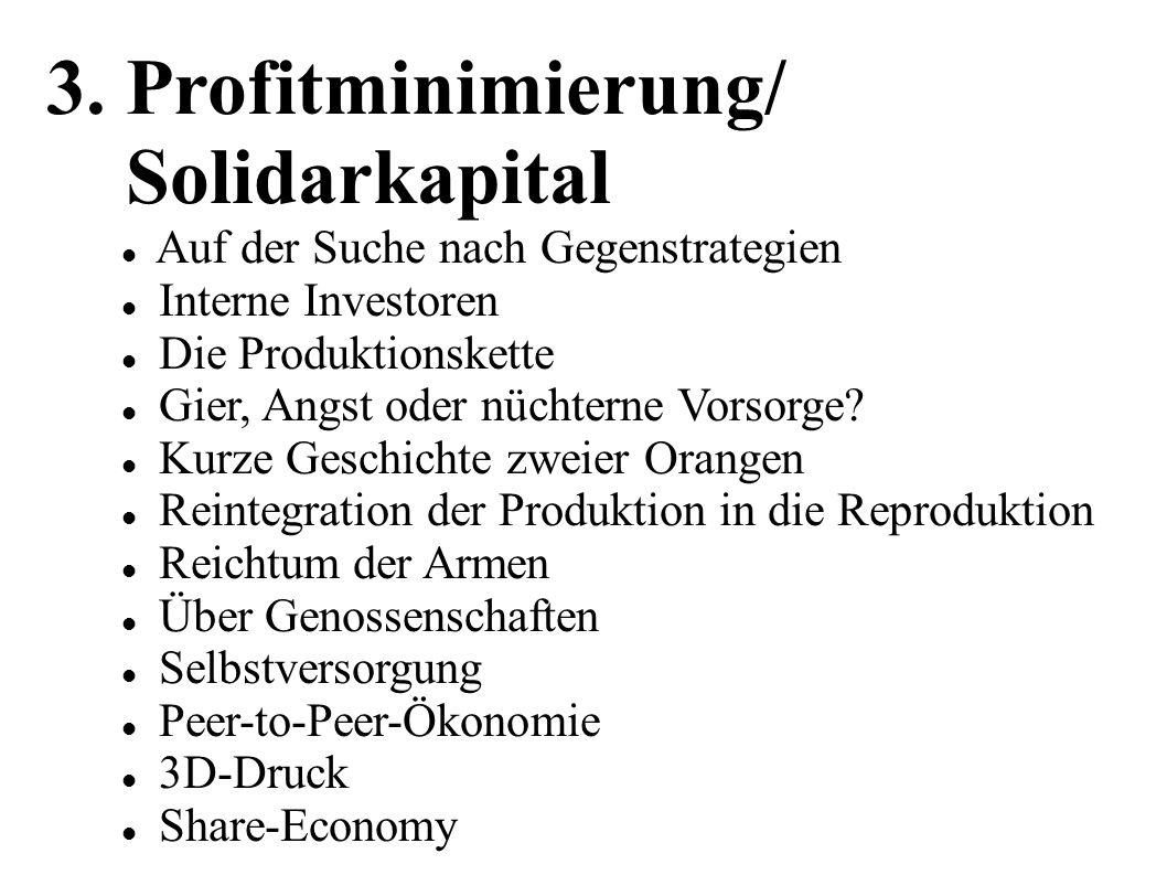 3. Profitminimierung/ Solidarkapital Auf der Suche nach Gegenstrategien Interne Investoren Die Produktionskette Gier, Angst oder nüchterne Vorsorge? K