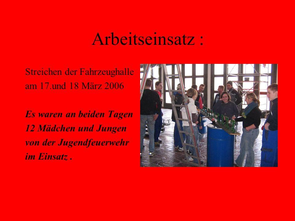 Arbeitseinsatz : Streichen der Fahrzeughalle am 17.und 18 März 2006 Es waren an beiden Tagen 12 Mädchen und Jungen von der Jugendfeuerwehr im Einsatz.